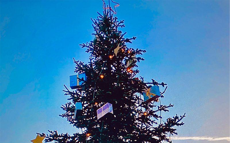 Wenigstens der Weihnachtsbaum steht